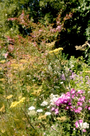 Great Dixter (mixed border)