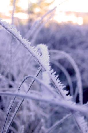 Winterimpressionen Oeschberg