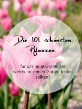 Die 101 schönsten Pflanzen